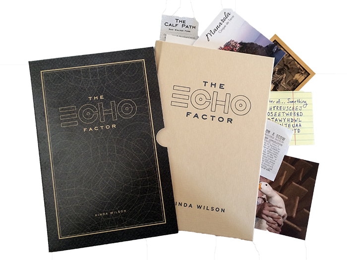 The Echo Factor with inserts